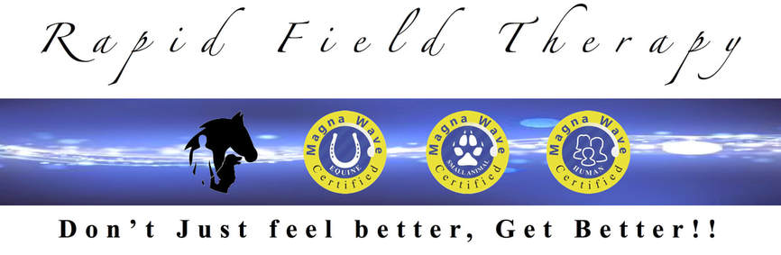Rapid Field Therapy - Magna Wave Pulsed Electromagnetic Field Therapy Don't just feel better, Get Better!